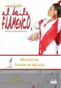 el-baile-flamenco-20